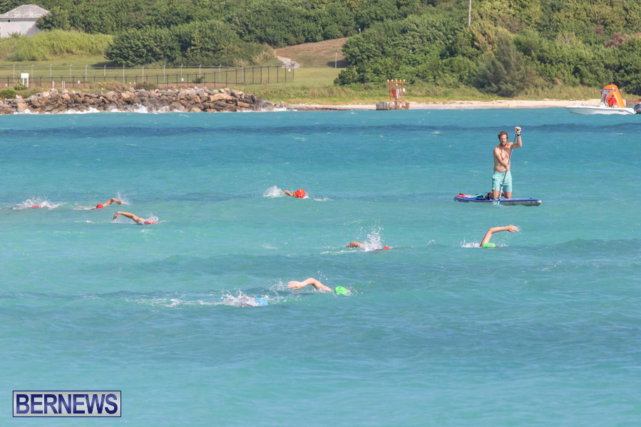 Open-Water-Bermuda-National-Swimming-Championships-September-15-2019-0239