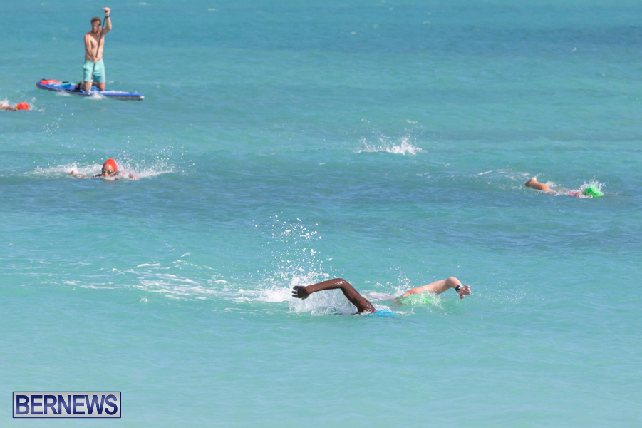 Open-Water-Bermuda-National-Swimming-Championships-September-15-2019-0244