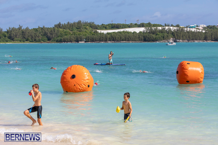 Open-Water-Bermuda-National-Swimming-Championships-September-15-2019-0262