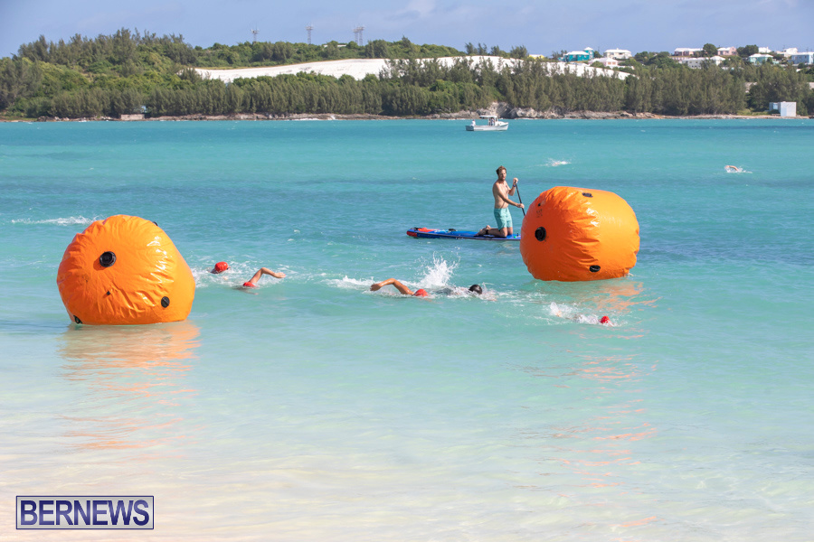 Open-Water-Bermuda-National-Swimming-Championships-September-15-2019-0271