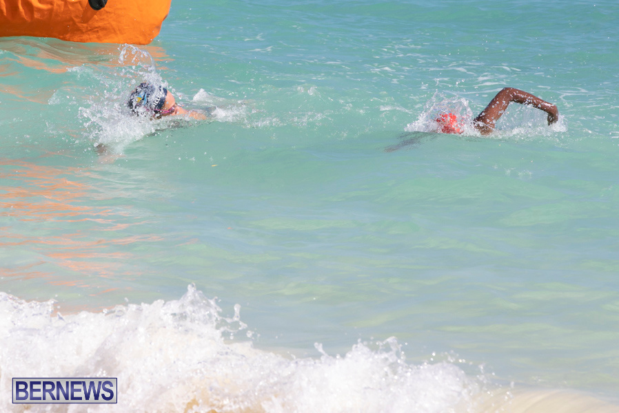 Open-Water-Bermuda-National-Swimming-Championships-September-15-2019-0323