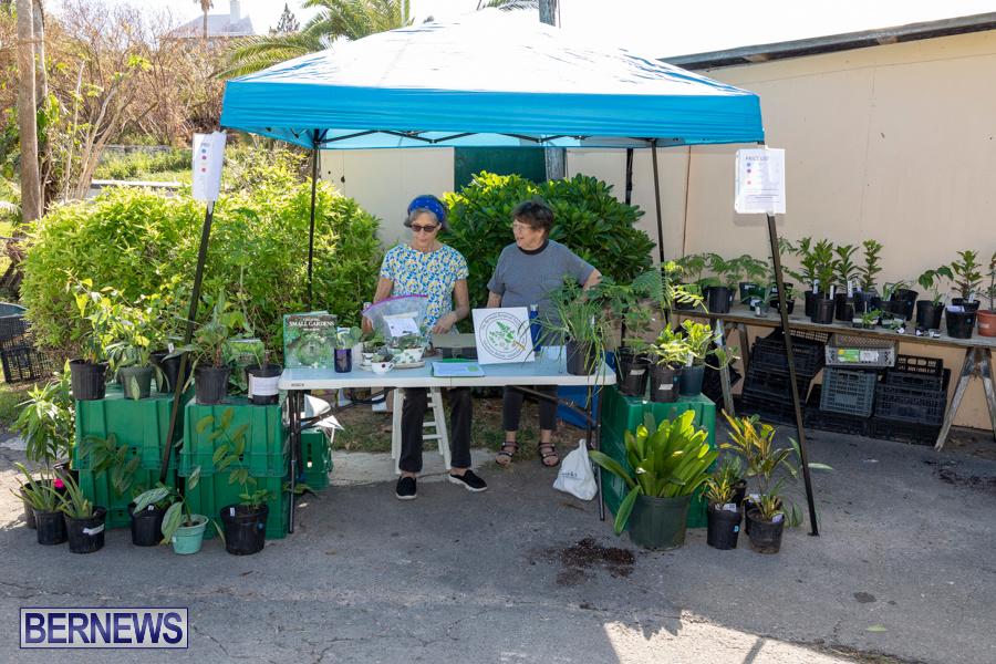 Bermuda Botanical Society Plant Sale, October 12 2019-4651