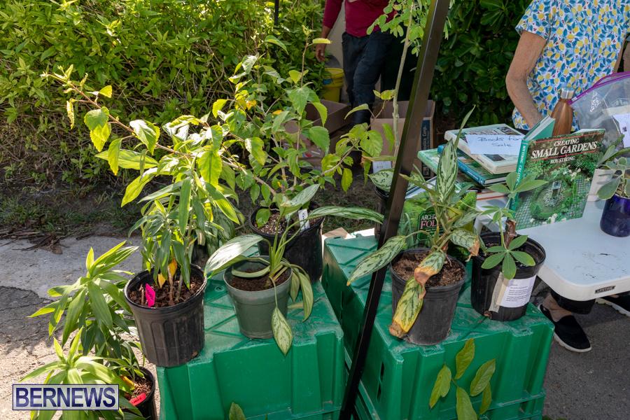 Bermuda Botanical Society Plant Sale, October 12 2019-4652