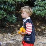 J&J Produce Pick Your Own Pumpkin Bermuda October 11 2019 (21)