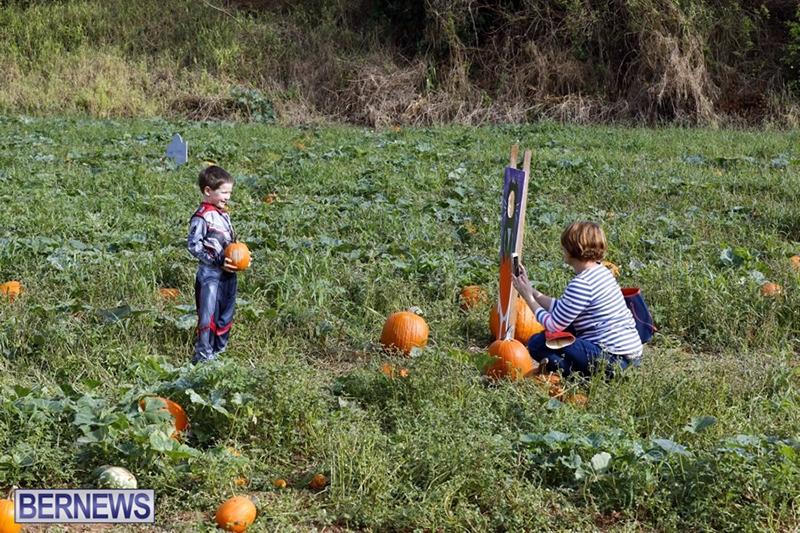 JJ-Produce-Pick-Your-Own-Pumpkin-Bermuda-October-11-2019-62