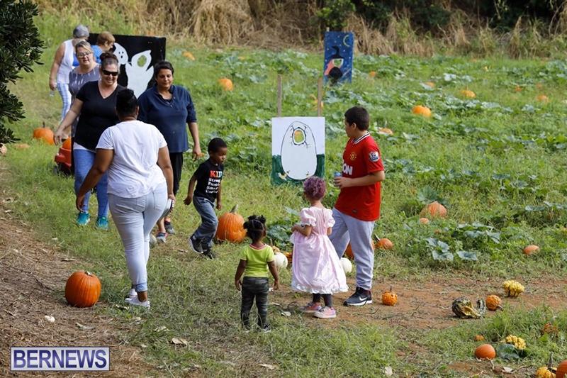 JJ-Produce-Pick-Your-Own-Pumpkin-Bermuda-October-11-2019-66