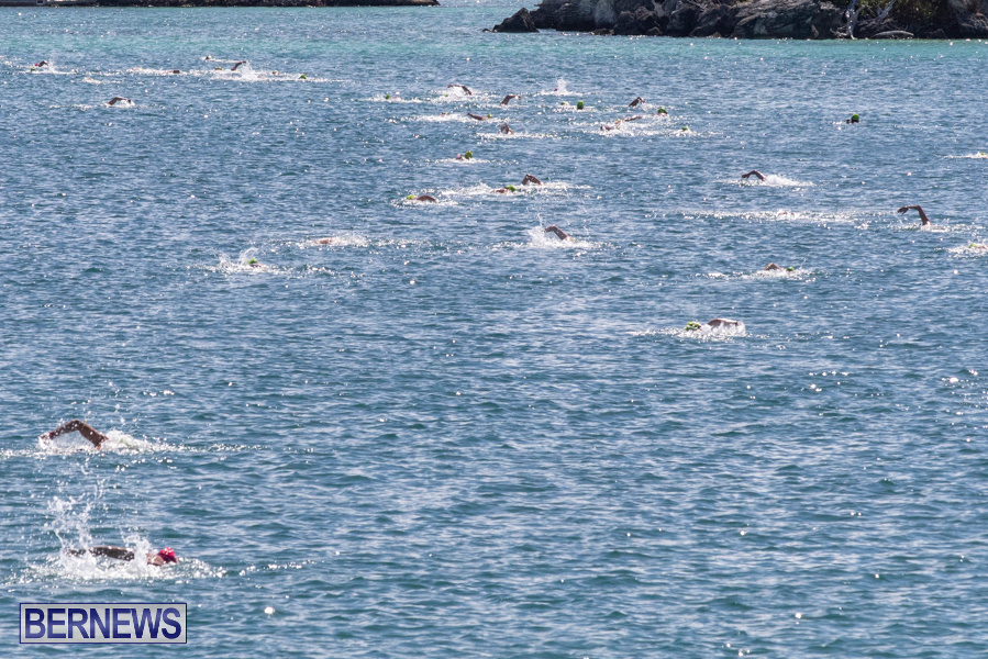 Round-the-Sound-Swim-Bermuda-October-13-2019-6000