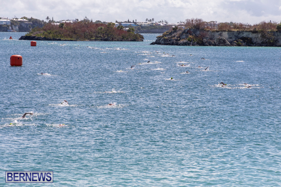 Round-the-Sound-Swim-Bermuda-October-13-2019-6001