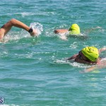 Round the Sound Swim Bermuda, October 13 2019-6008