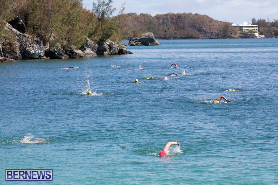 Round-the-Sound-Swim-Bermuda-October-13-2019-6010