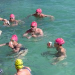 Round the Sound Swim Bermuda, October 13 2019-6011