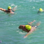 Round the Sound Swim Bermuda, October 13 2019-6013