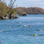 Round the Sound Swim Bermuda, October 13 2019-6015