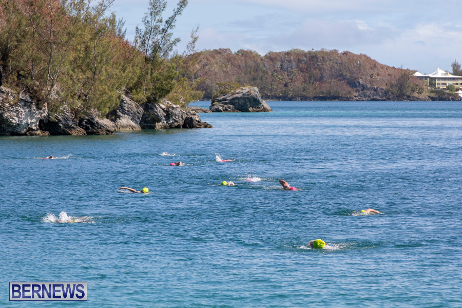 Round-the-Sound-Swim-Bermuda-October-13-2019-6015