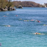 Round the Sound Swim Bermuda, October 13 2019-6019