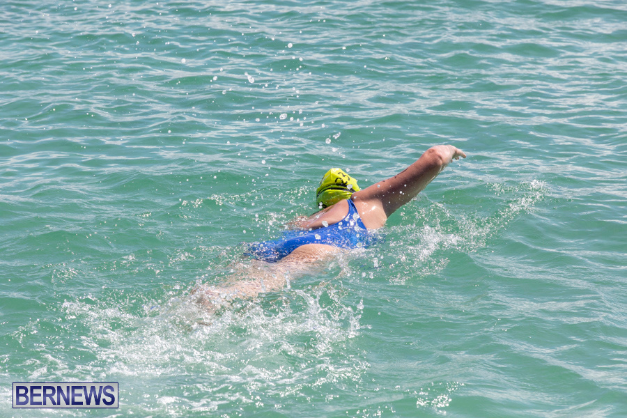 Round-the-Sound-Swim-Bermuda-October-13-2019-6024
