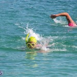 Round the Sound Swim Bermuda, October 13 2019-6032