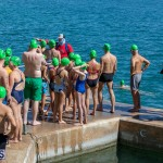 Round the Sound Swim Bermuda, October 13 2019-6043