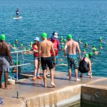 Round the Sound Swim Bermuda, October 13 2019-6055