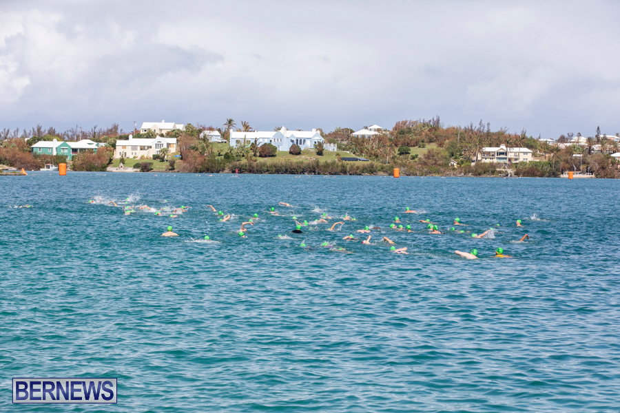 Round-the-Sound-Swim-Bermuda-October-13-2019-6069