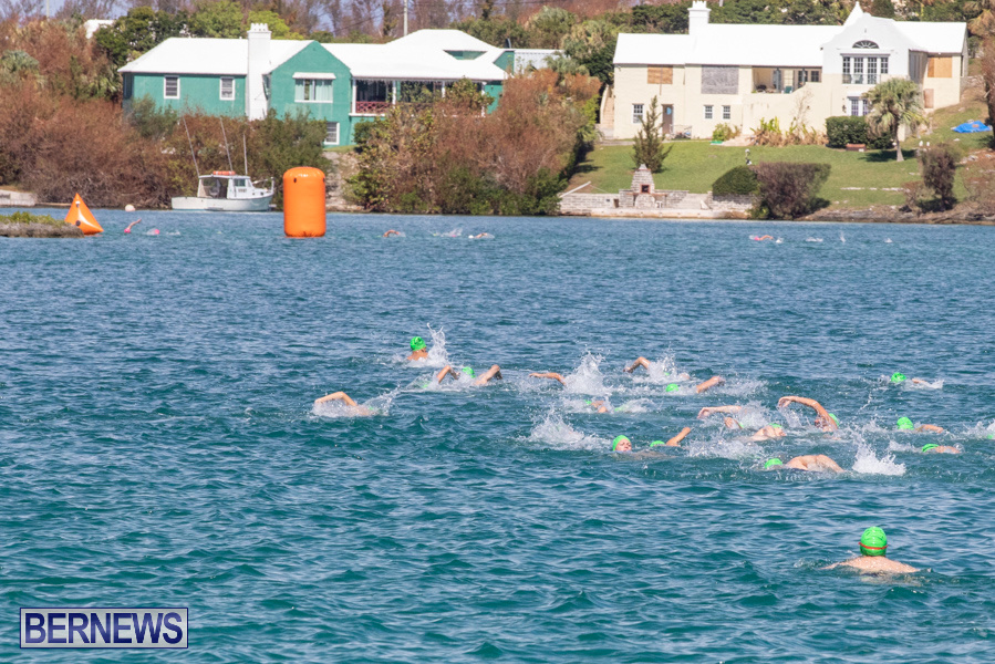 Round-the-Sound-Swim-Bermuda-October-13-2019-6073