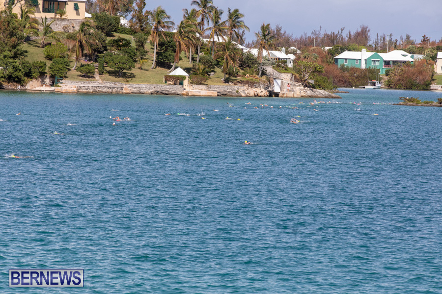 Round-the-Sound-Swim-Bermuda-October-13-2019-6077