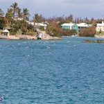 Round the Sound Swim Bermuda, October 13 2019-6078