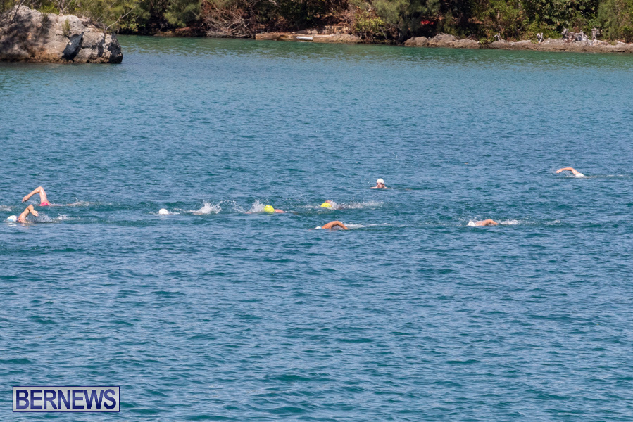 Round-the-Sound-Swim-Bermuda-October-13-2019-6079