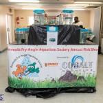 Bermuda Fry-Angle Aquarium Society Annual Tropical Fish Show, November 16 2019-2444