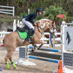 Caribbean Equestrian Association Regional Jumping Challenge Bermuda, November 16 2019-2022