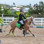 Caribbean Equestrian Association Regional Jumping Challenge Bermuda, November 16 2019-2026