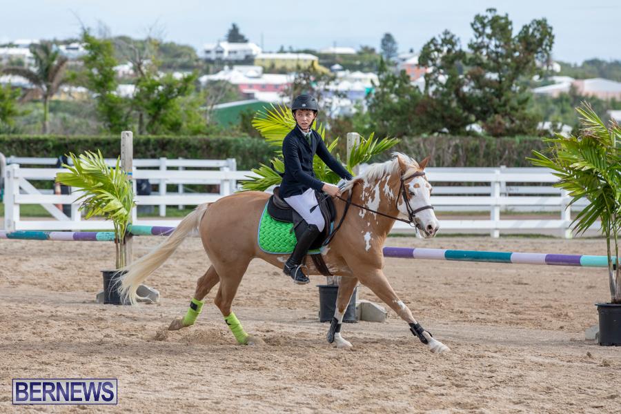 Caribbean-Equestrian-Association-Regional-Jumping-Challenge-Bermuda-November-16-2019-2026