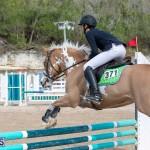 Caribbean Equestrian Association Regional Jumping Challenge Bermuda, November 16 2019-2028