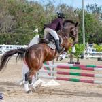 Caribbean Equestrian Association Regional Jumping Challenge Bermuda, November 16 2019-2047