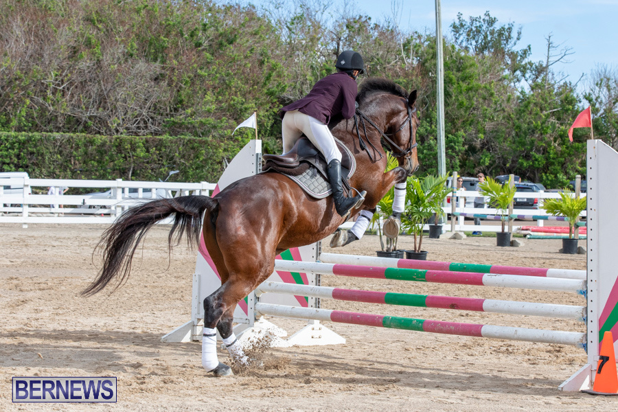 Caribbean-Equestrian-Association-Regional-Jumping-Challenge-Bermuda-November-16-2019-2047