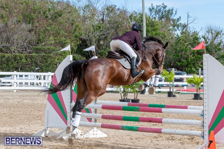 Caribbean-Equestrian-Association-Regional-Jumping-Challenge-Bermuda-November-16-2019-2048