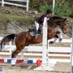Caribbean Equestrian Association Regional Jumping Challenge Bermuda, November 16 2019-2055
