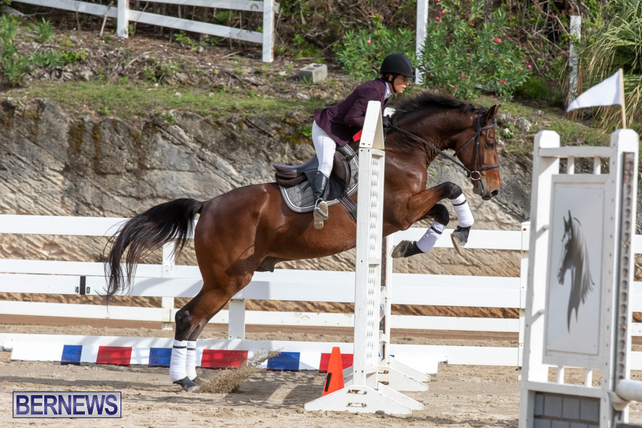 Caribbean-Equestrian-Association-Regional-Jumping-Challenge-Bermuda-November-16-2019-2055