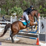 Caribbean Equestrian Association Regional Jumping Challenge Bermuda, November 16 2019-2063