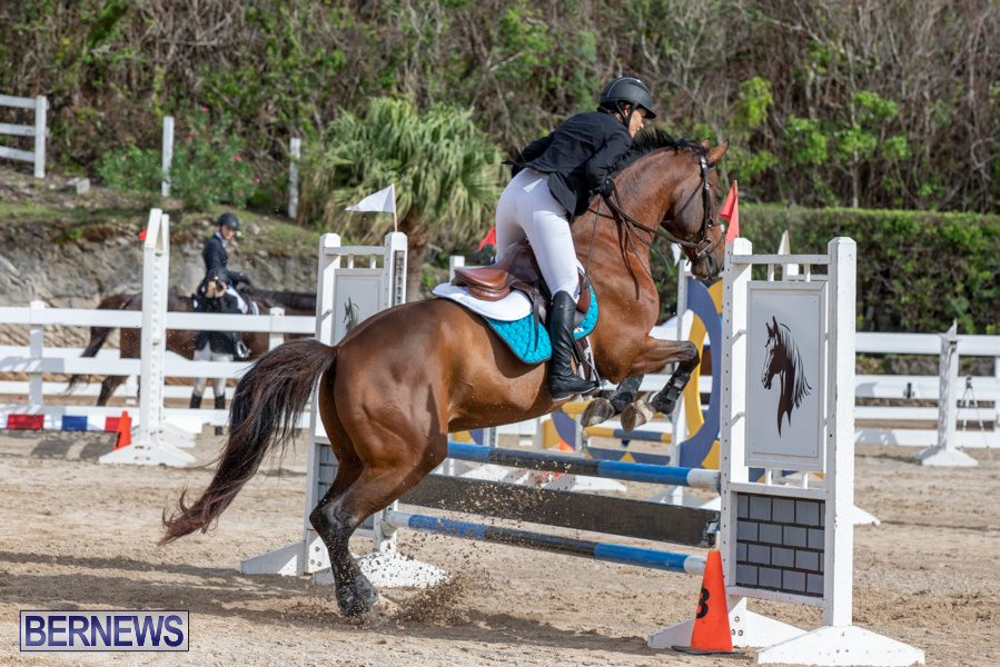 Caribbean-Equestrian-Association-Regional-Jumping-Challenge-Bermuda-November-16-2019-2063