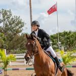 Caribbean Equestrian Association Regional Jumping Challenge Bermuda, November 16 2019-2066