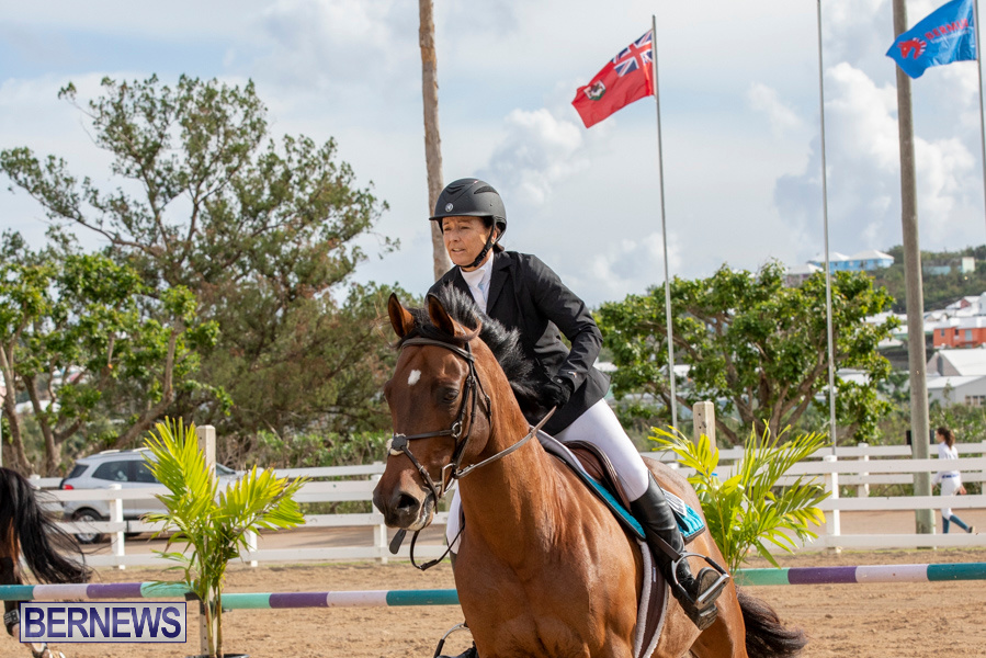 Caribbean-Equestrian-Association-Regional-Jumping-Challenge-Bermuda-November-16-2019-2066