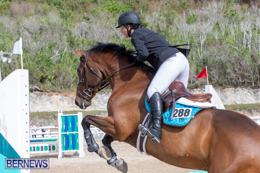 Caribbean-Equestrian-Association-Regional-Jumping-Challenge-Bermuda-November-16-2019-2070