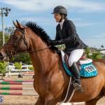 Caribbean Equestrian Association Regional Jumping Challenge Bermuda, November 16 2019-2080