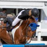 Caribbean Equestrian Association Regional Jumping Challenge Bermuda, November 16 2019-2087