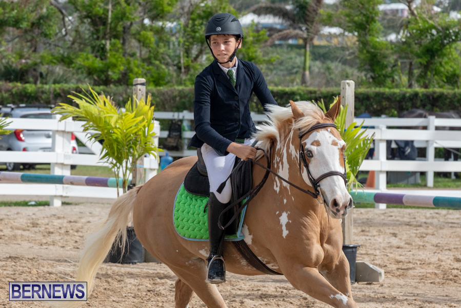 Caribbean-Equestrian-Association-Regional-Jumping-Challenge-Bermuda-November-16-2019-2105