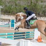 Caribbean Equestrian Association Regional Jumping Challenge Bermuda, November 16 2019-2110