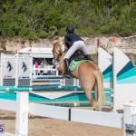 Caribbean Equestrian Association Regional Jumping Challenge Bermuda, November 16 2019-2113