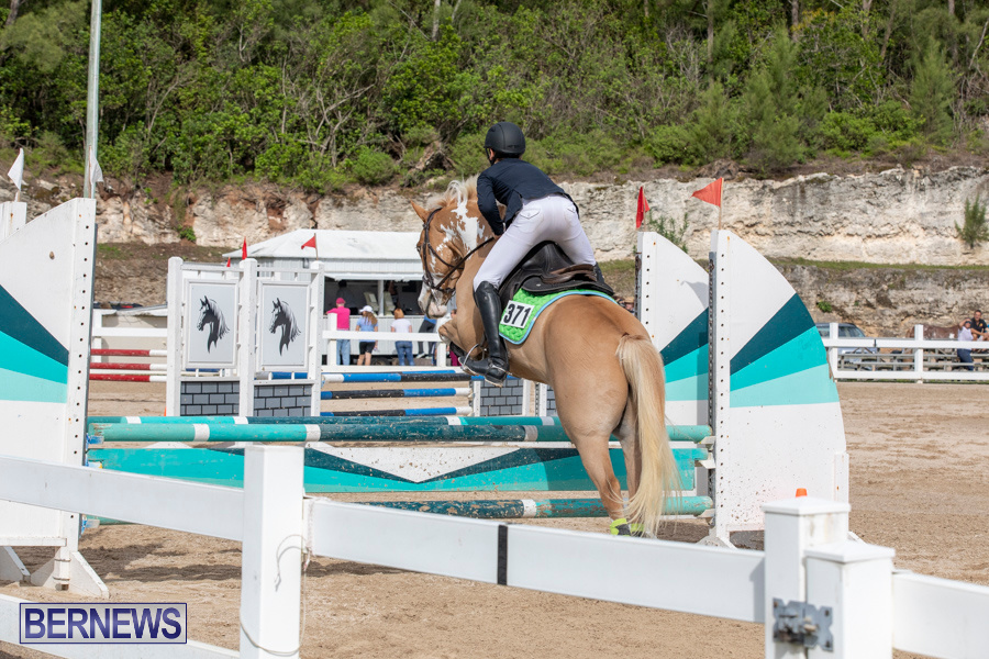 Caribbean-Equestrian-Association-Regional-Jumping-Challenge-Bermuda-November-16-2019-2113