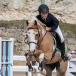 Caribbean Equestrian Association Regional Jumping Challenge Bermuda, November 16 2019-2118